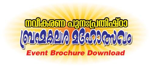 Udayasthamana-Mahothsavam-2017-3
